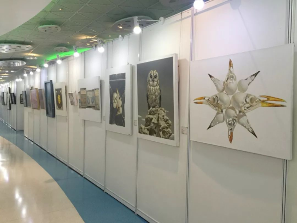 2017全国大学生艺术年度大展12月19日盛装回归