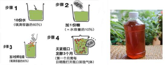 環保酵素制作DIY及生活應用 width=